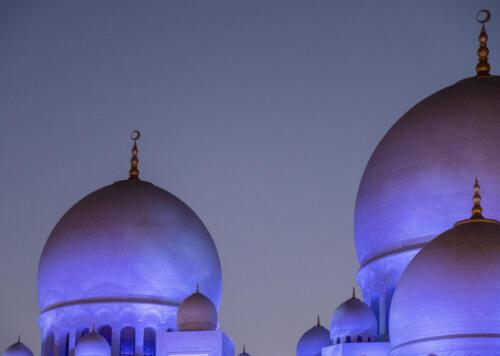 David Hicks - Grand Mosque Domes at Dusk