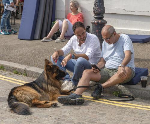 David Hicks - Taking the dog for a walk