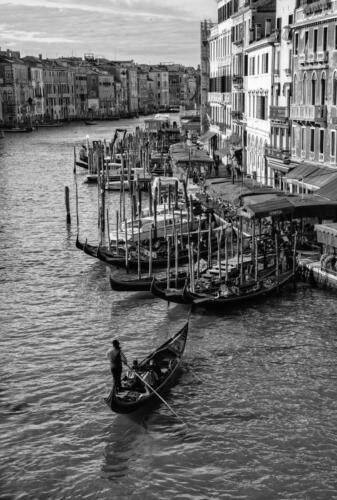 Rick Goldstein - Venice