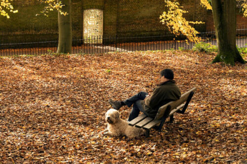 Relaxing on the Heath
